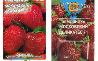 Клубника московский деликатес описание сорта фото отзывы