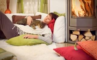 Кошка лежит на животе у человека